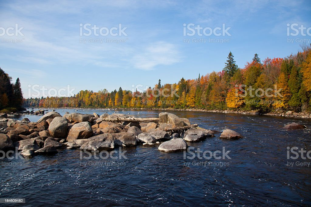 Flowing River in Autumn with Blue Sky and Coloured Forest stock photo