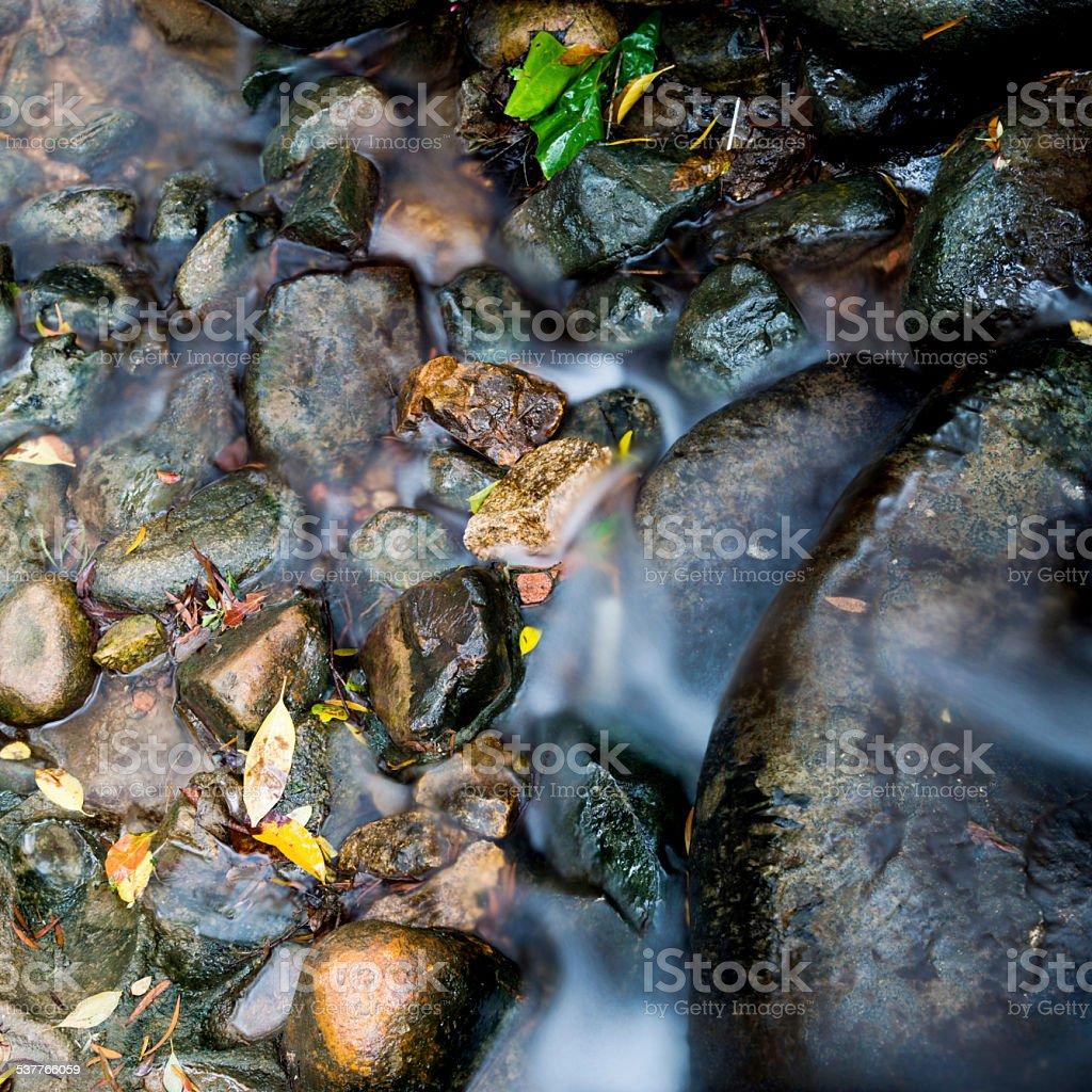 flowing stream stock photo