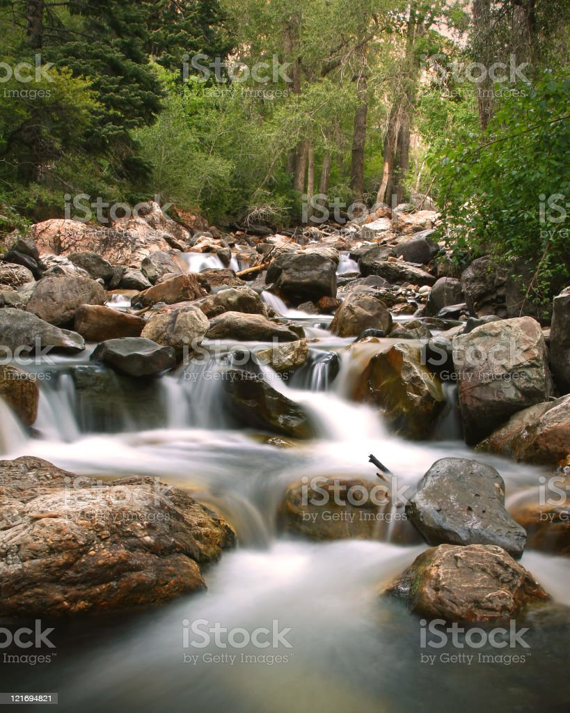 Flowing Stream - Vertical royalty-free stock photo
