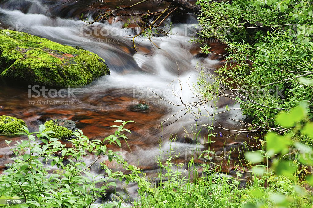 Flowing Water in Mountain Stream royalty-free stock photo