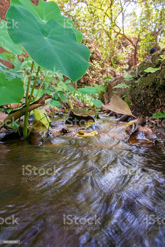 Flowing water low angle stock photo