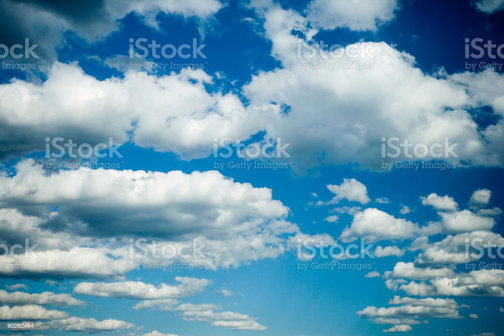 Fluffy Day royalty-free stock photo