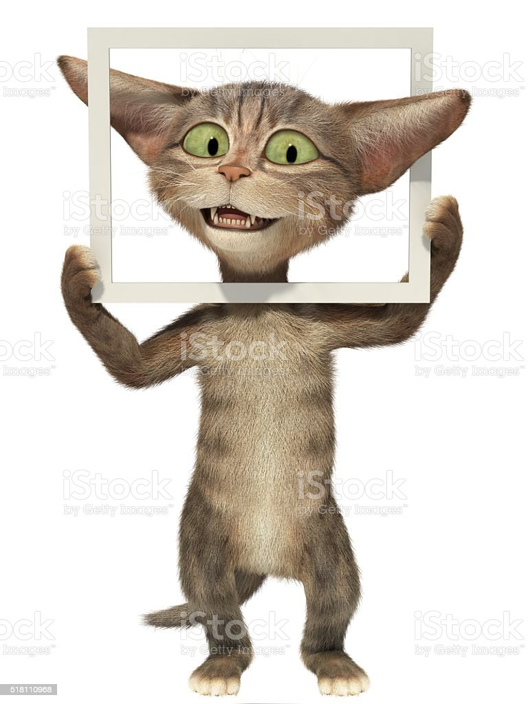 Fluffy kitten posing with picture frame stock photo