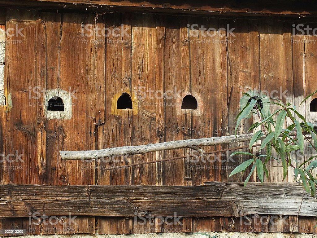 Fluglöcher in Bretterwand stock photo