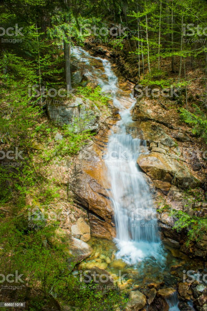 flume gorge in new hampshire stock photo