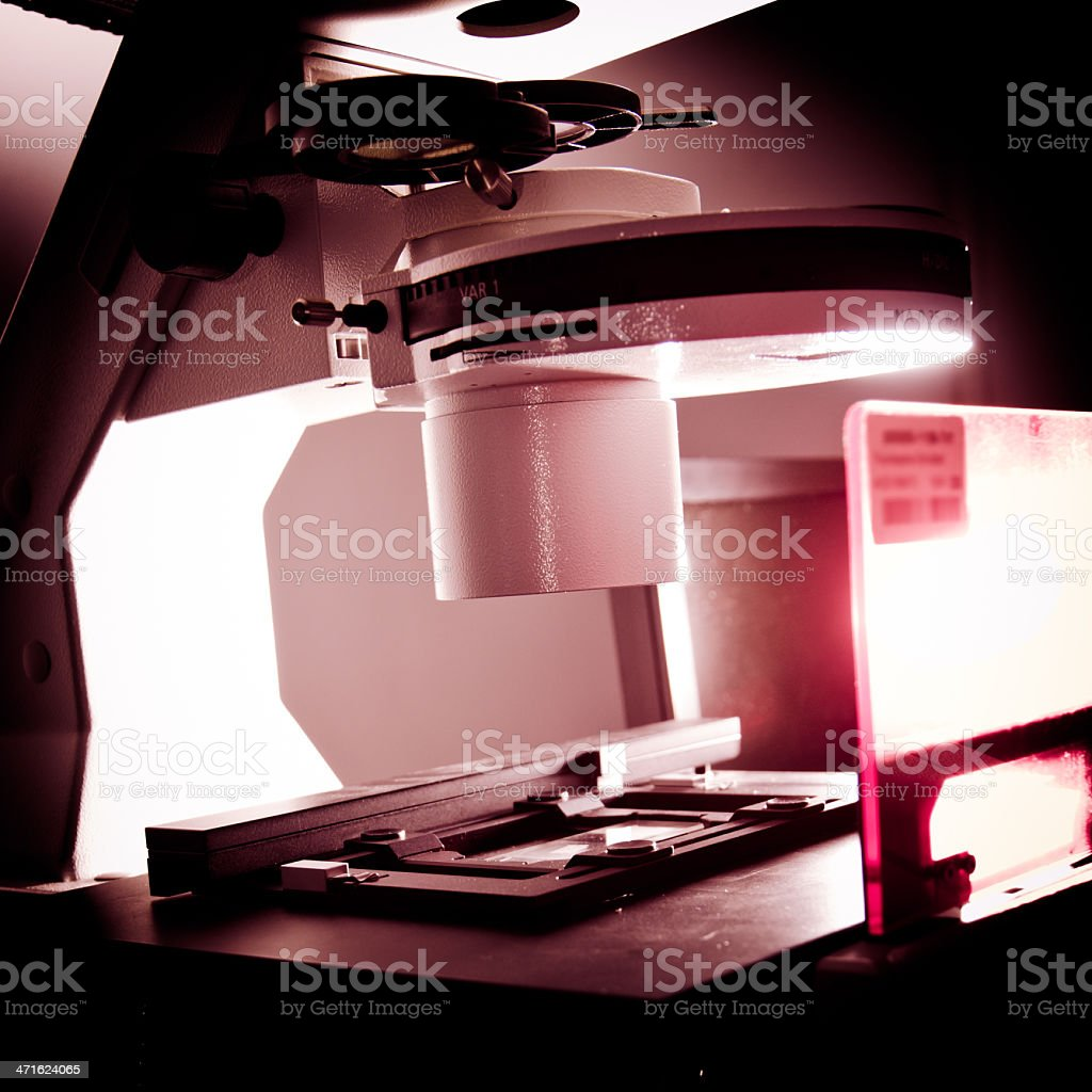 fluorescence phase contrast microscope royalty-free stock photo