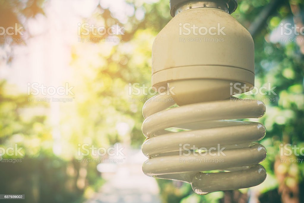 fluorescent light bulb in bright garden background. stock photo