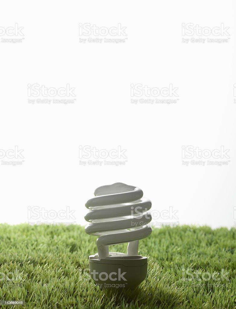 Fluorescent light bulb in grass stock photo