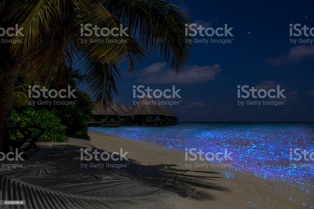 Fluorescent plankton in the Maldives - Indian Ocean stock photo