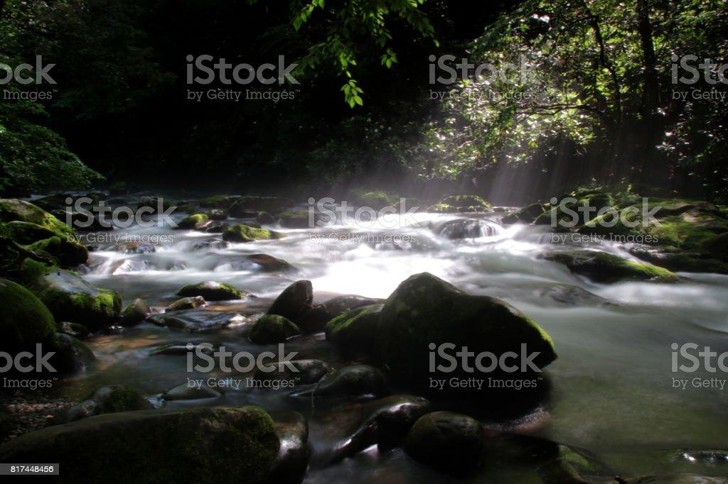 Flusslandschaft im Great Smokey stock photo