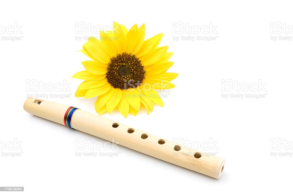 Flute Quenilla and sunflower. royalty-free stock photo