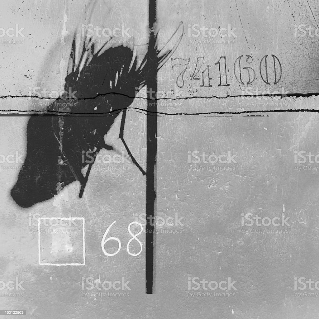 fly and sixty eigth royalty-free stock photo