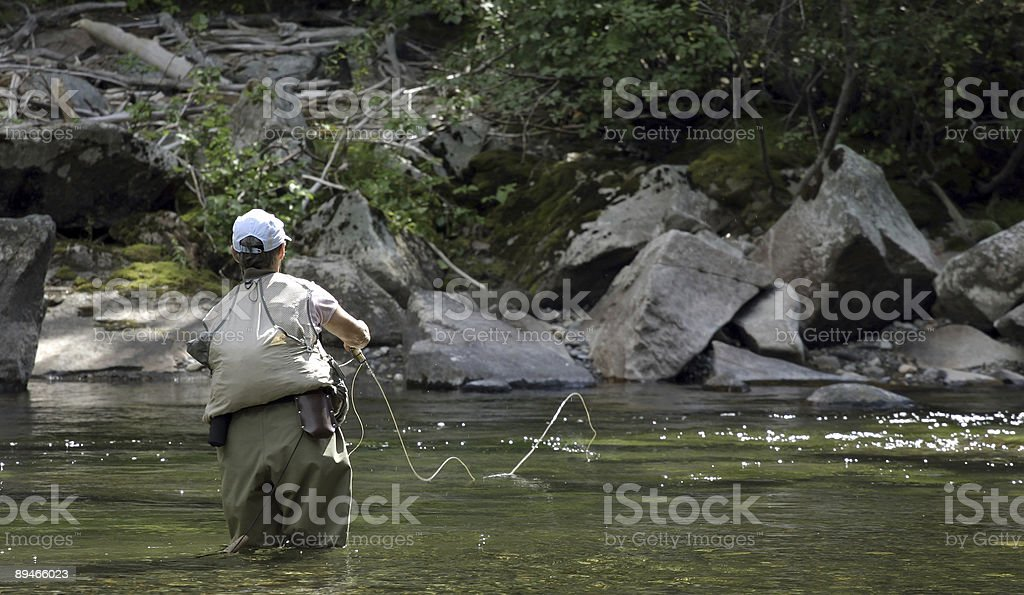 Fly Fisher in Montana royalty-free stock photo