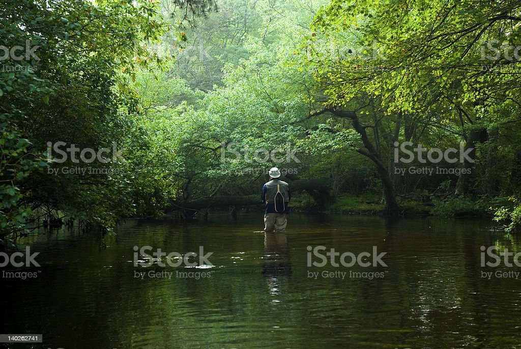 Fly Fisherman in the River royalty-free stock photo