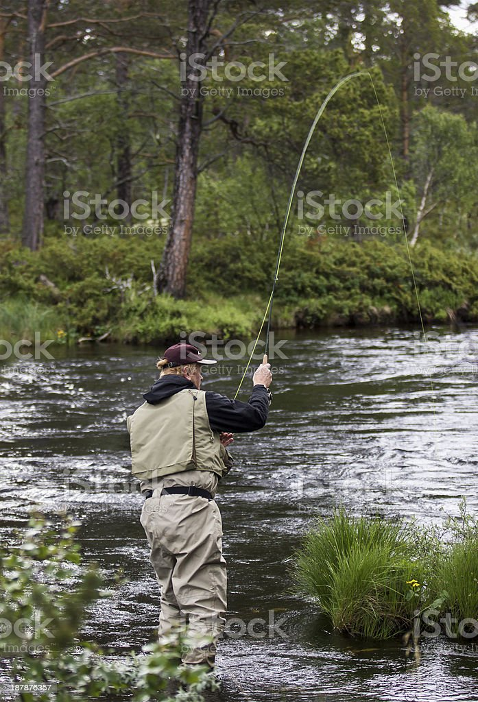 Fly fisherman river raised rod royalty-free stock photo