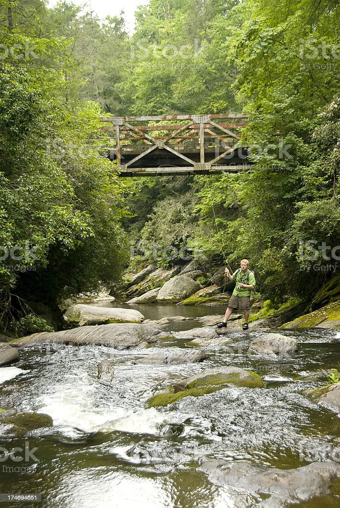 Fly Fishing 1 royalty-free stock photo