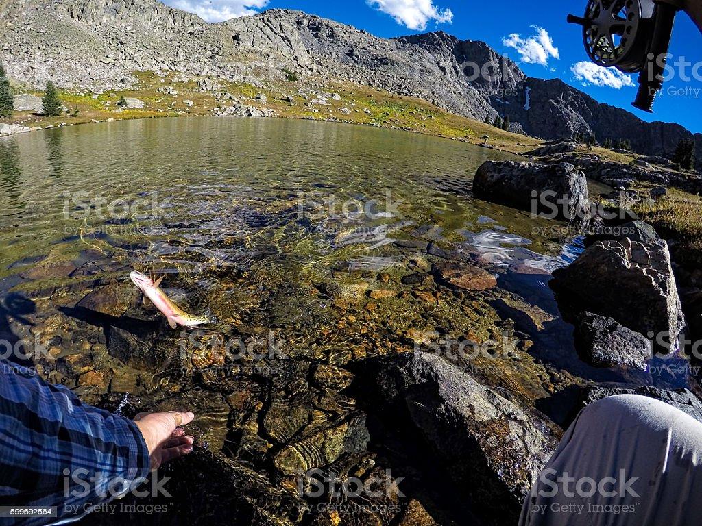 Fly Fishing Alpine Lake POV stock photo