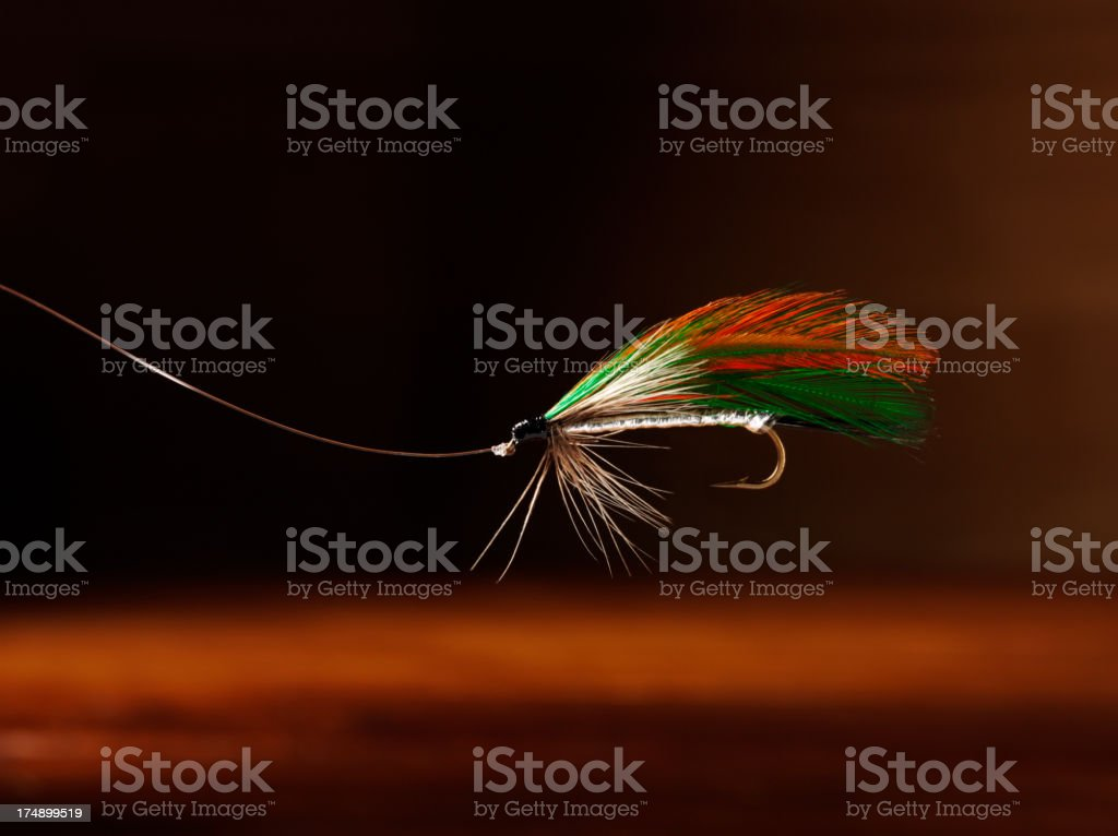 Fly Fishing Feather with a Hook royalty-free stock photo