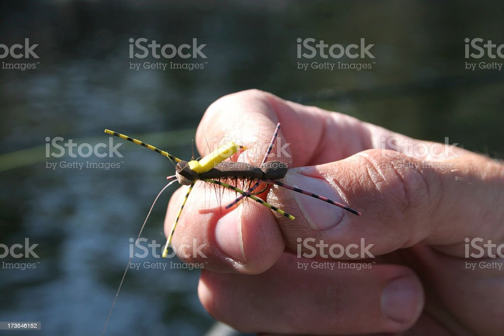 Fly Fishing Hopper stock photo