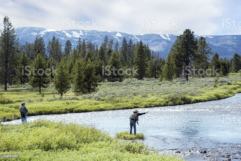 Fly Fishing in a Mountain Stream royalty-free stock photo
