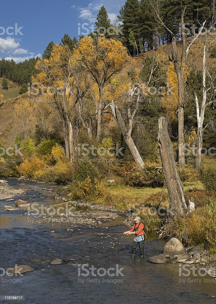 Fly Fishing in Fall royalty-free stock photo