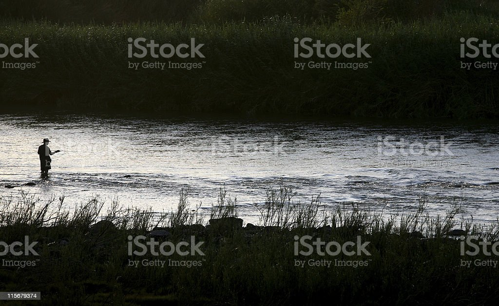 Fly fishing in river royalty-free stock photo