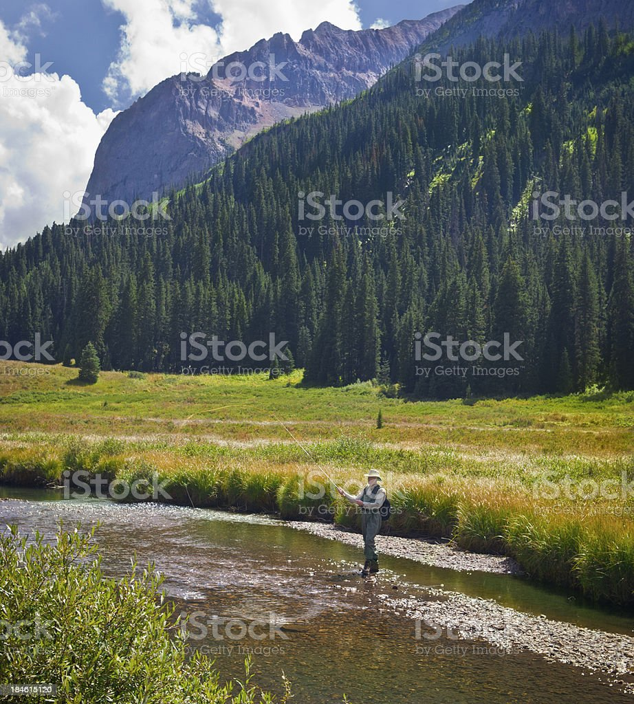 Fly Fishing in the Elk Mountains, Colorado stock photo