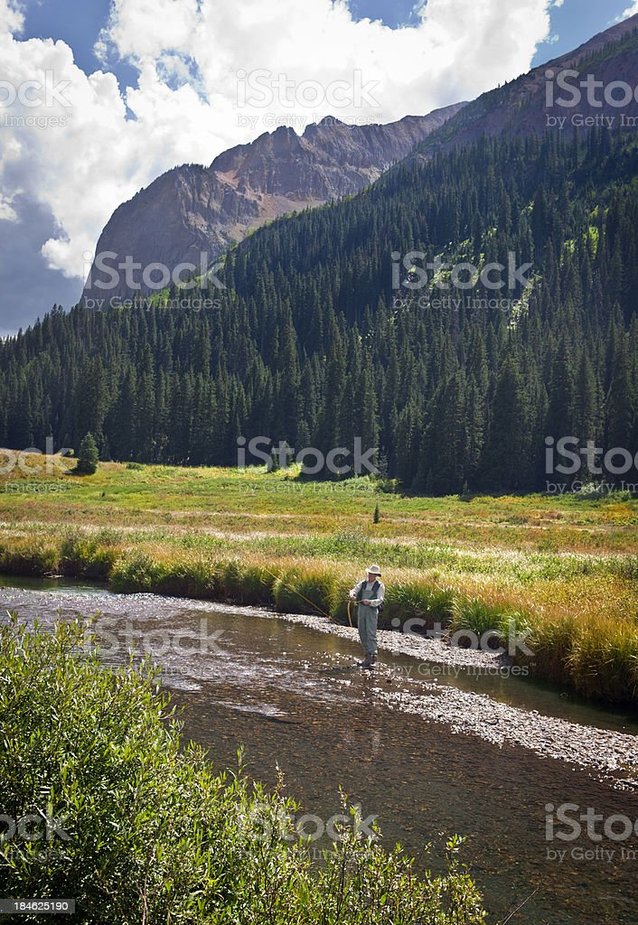 Fly Fishing in the Elk Mountains, Colorado royalty-free stock photo