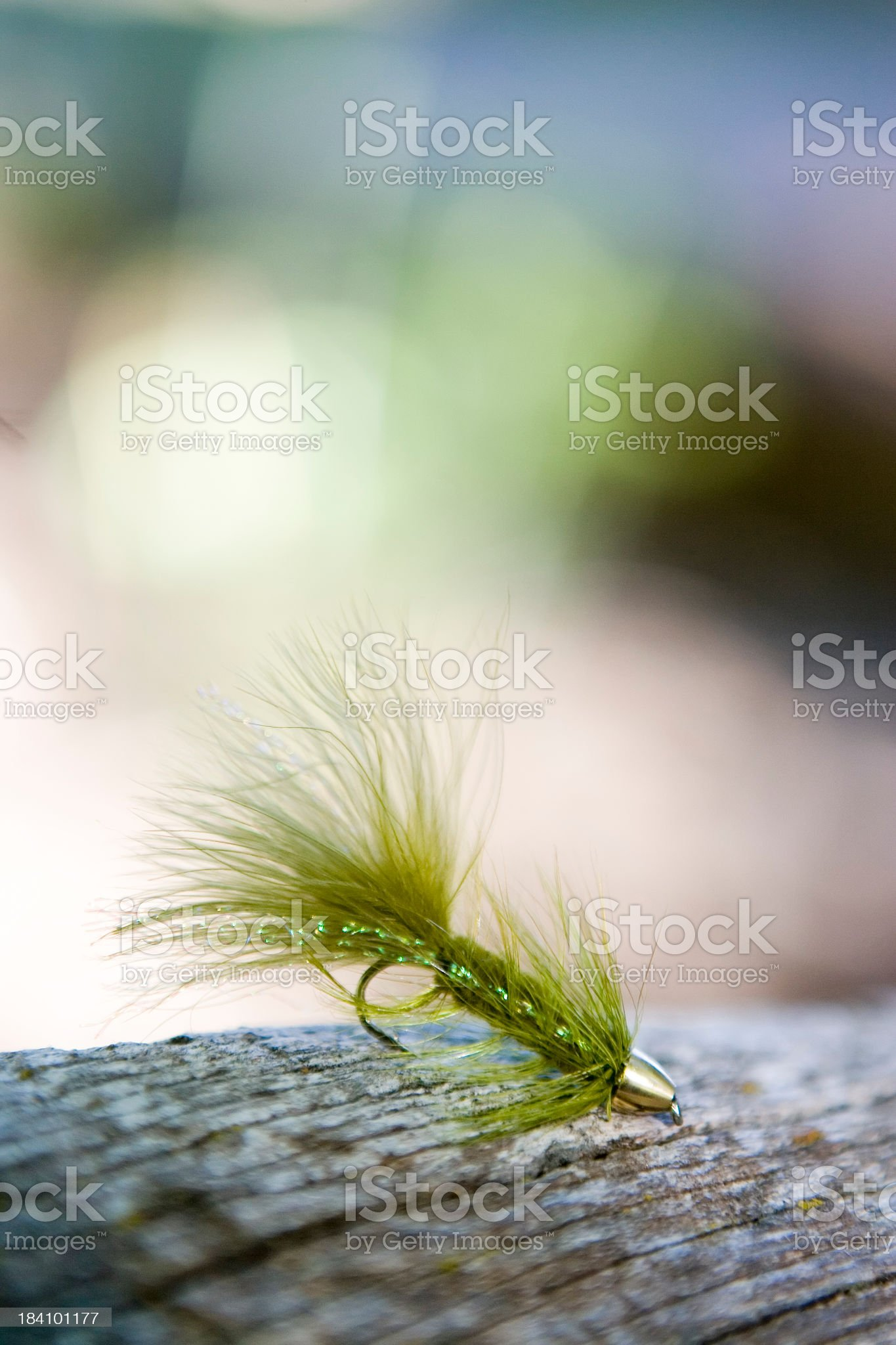 Fly Fishing Lure on Log-olive bugger vertical royalty-free stock photo