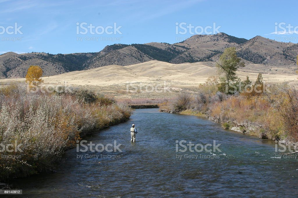 Fly Fishing on the Ruby River royalty-free stock photo