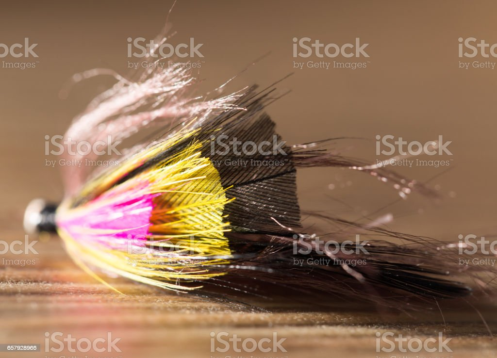 fly for fishing stock photo
