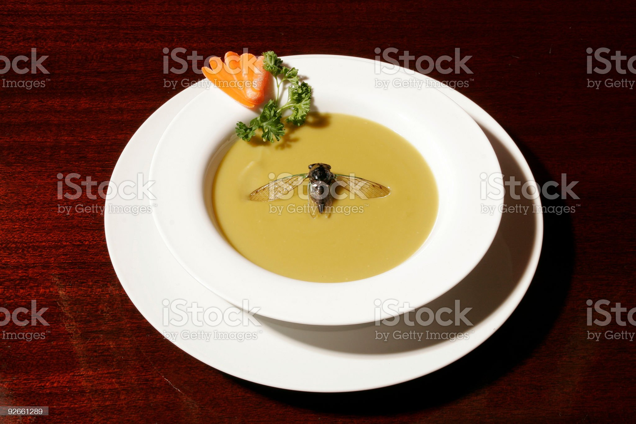 Fly in my Soup royalty-free stock photo