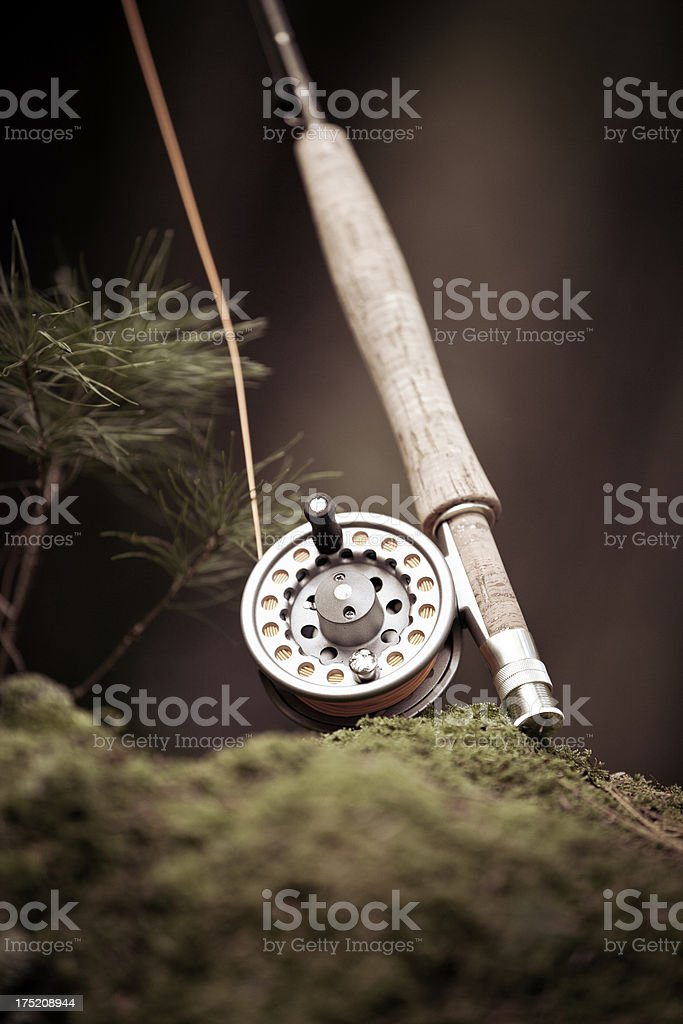 Fly rod and reel on mossy stump royalty-free stock photo