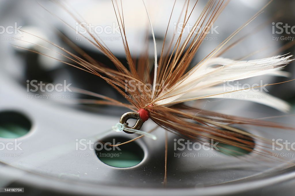Flyfishing Fly Detail #1 royalty-free stock photo