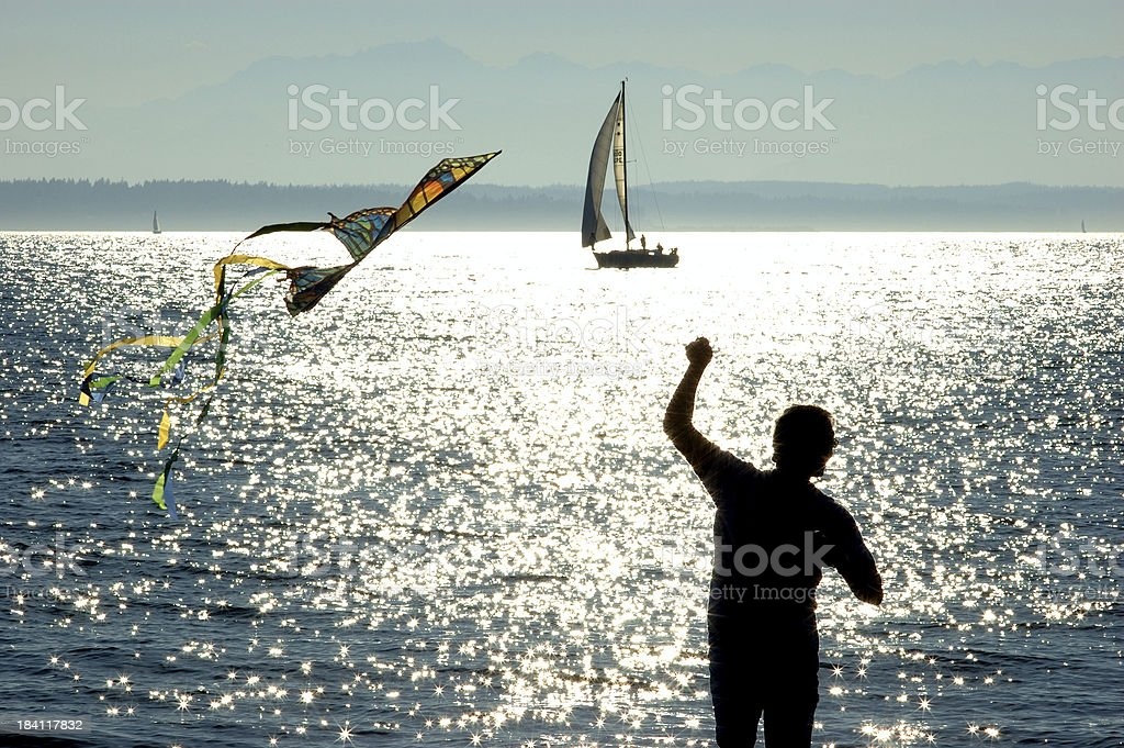 Flying a Kite by the Ocean royalty-free stock photo