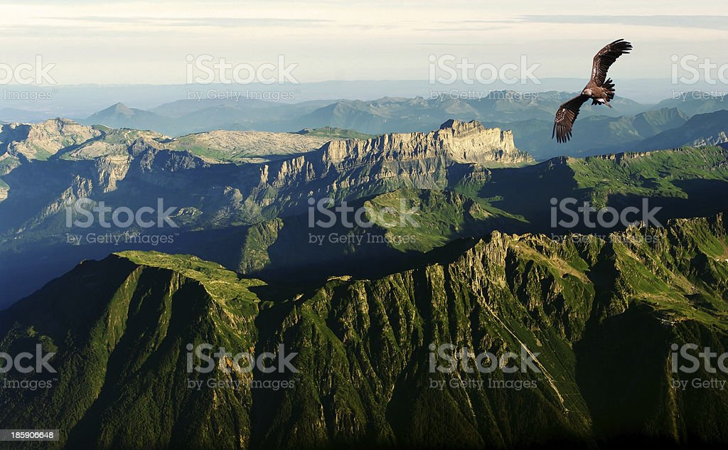 flying above the Alps stock photo