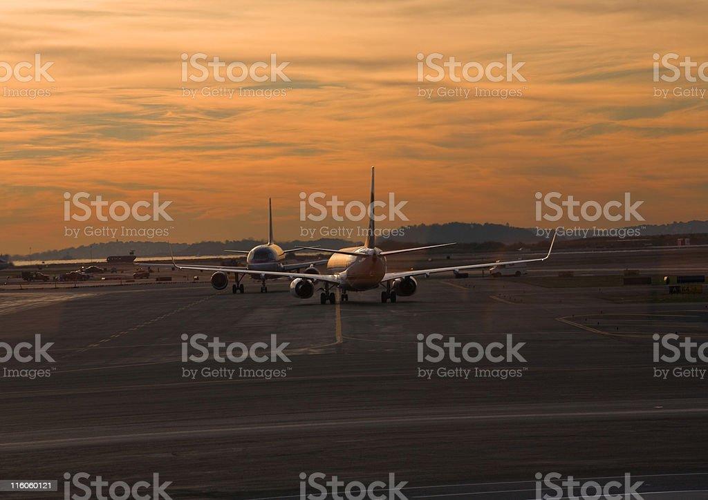 Flying at Dawn stock photo