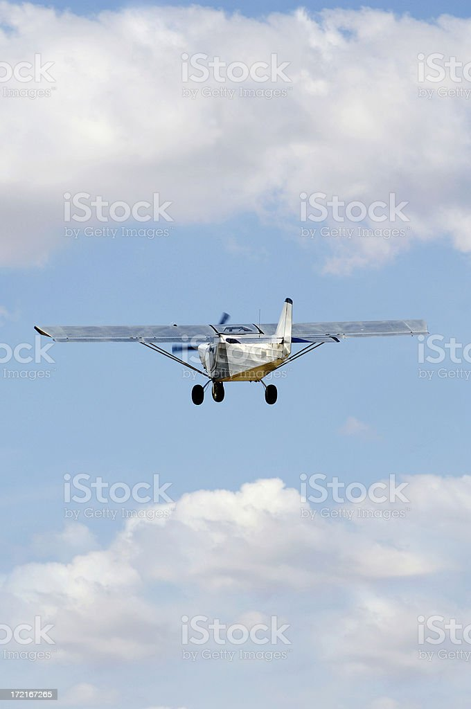 Flying away ... royalty-free stock photo
