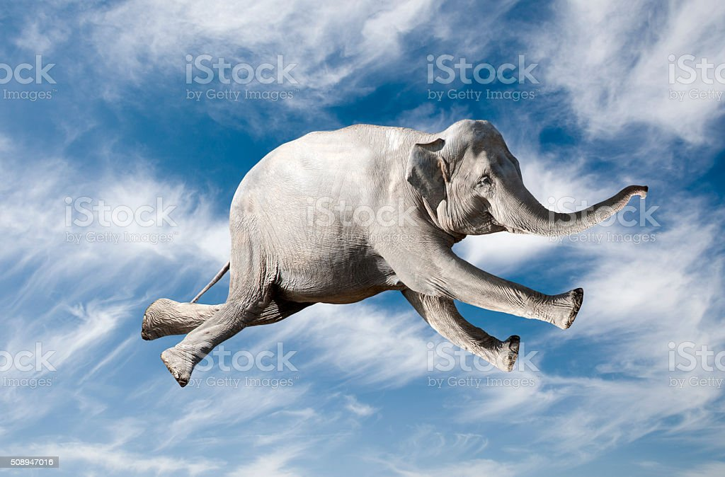 Flying Elephant stock photo
