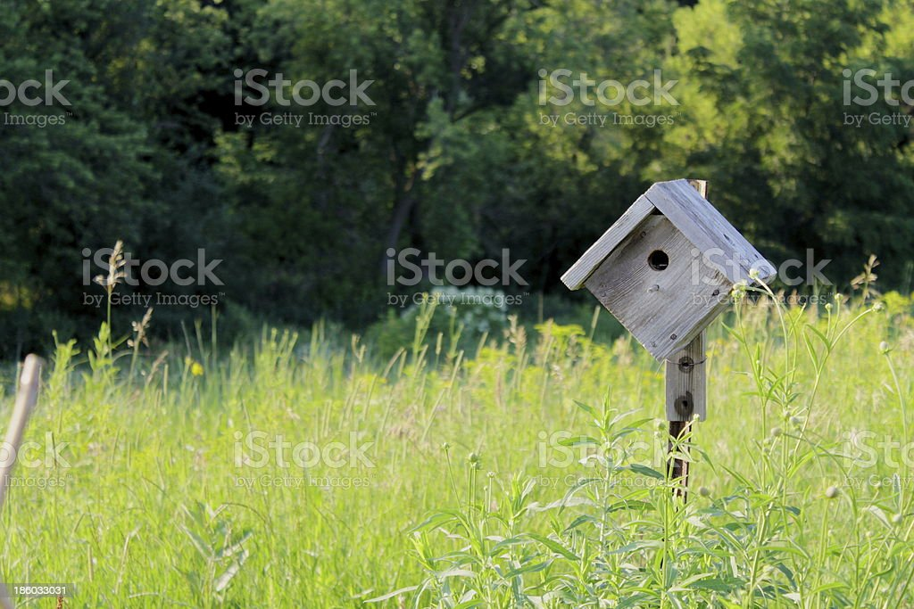 Flying Home royalty-free stock photo