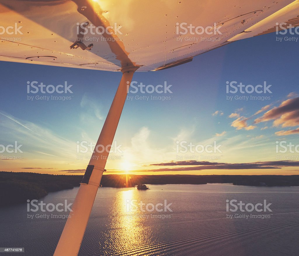 Flying in Evening Skies stock photo