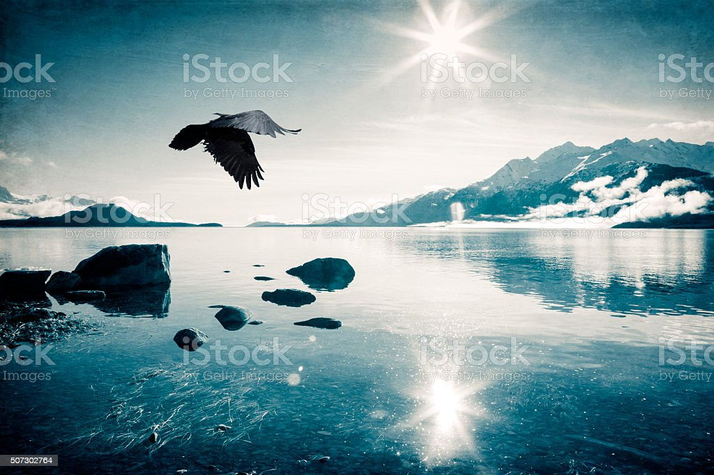 Flying in the Sun stock photo