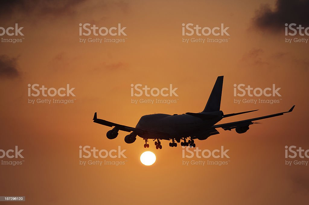 Flying into the sunset royalty-free stock photo