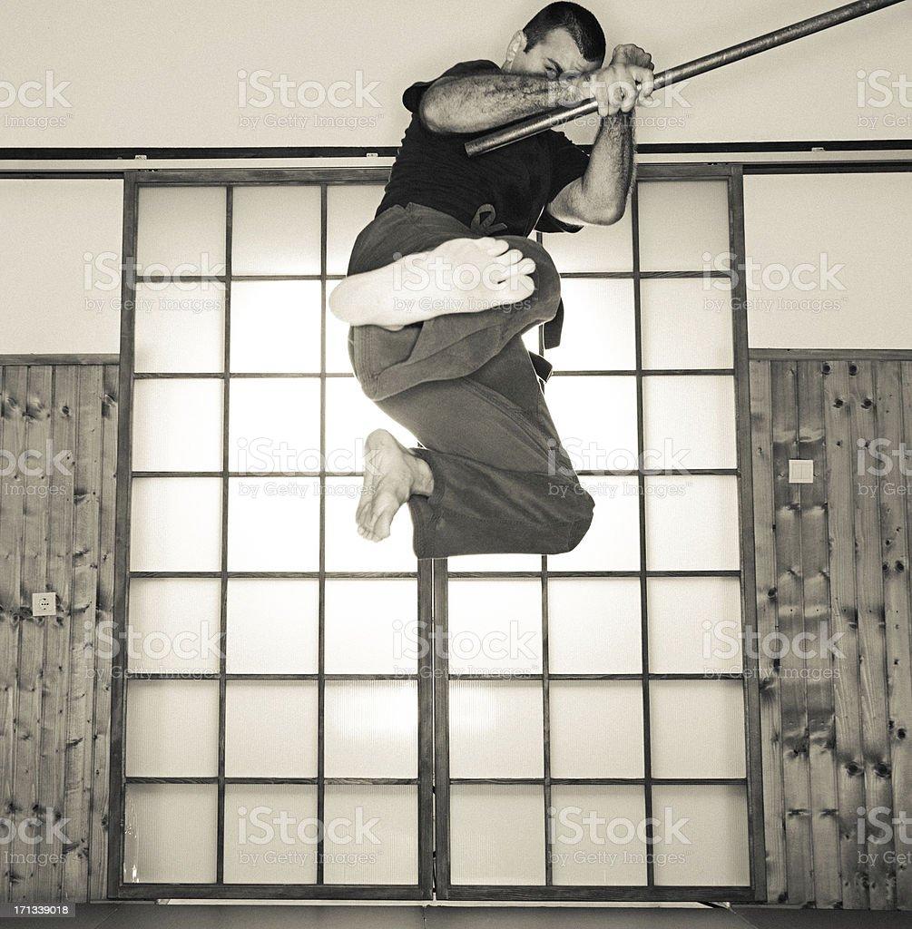 Flying Ninja royalty-free stock photo