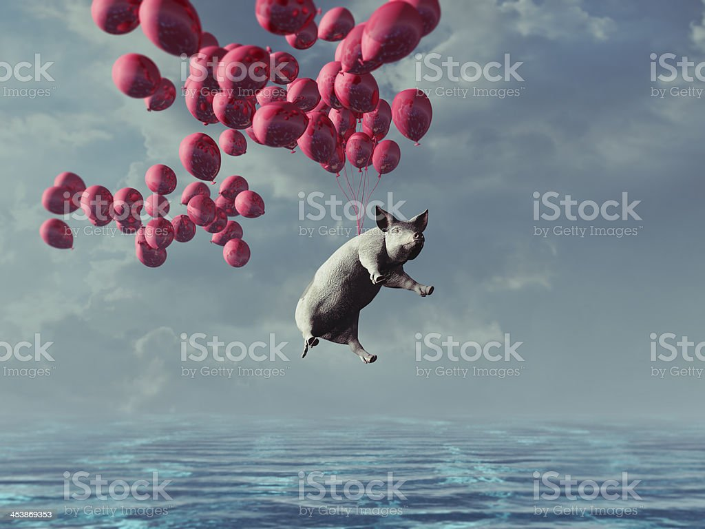 Flying pig over the sea stock photo