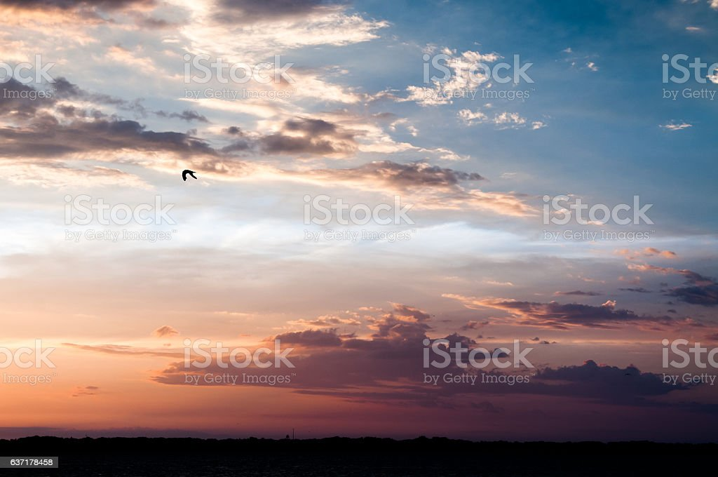 Flying solo through a dramatic sunset stock photo