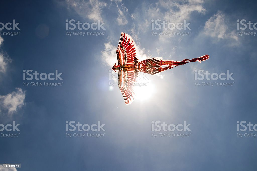 Flying the Firebird stock photo