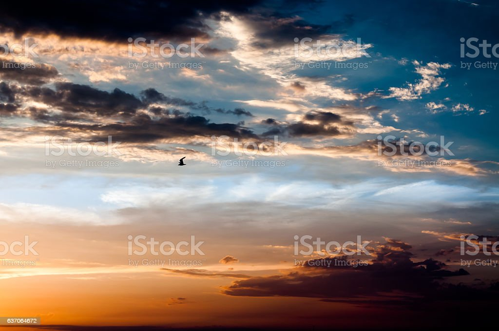 Flying through a dramatic sunset stock photo