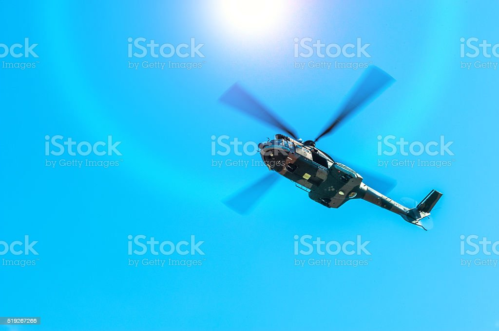 flying through sunlight stock photo