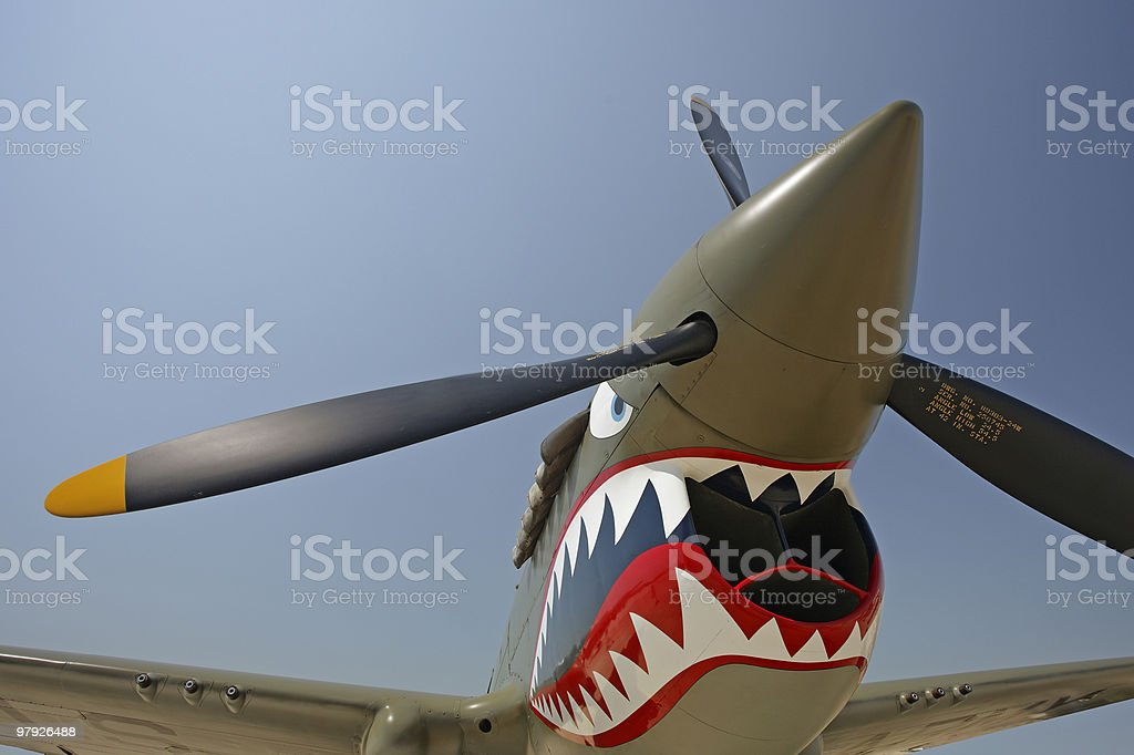 P-40 'Flying Tiger'Warhawk royalty-free stock photo